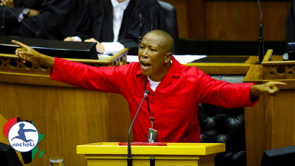 Chaos in South African Parliament as EFF Leader Malema Calls House Members Fools