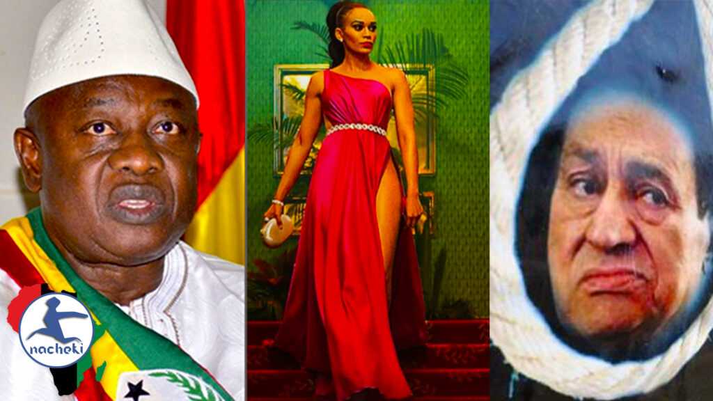 Ebola Free Africa, One Day African President, Dead President & Queen Sono is a Hit