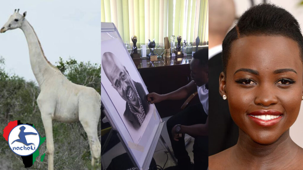 Albino Giraffes Killed , Assassin Arrested, Artist Goes Viral & Lupita Becomes Nigerian