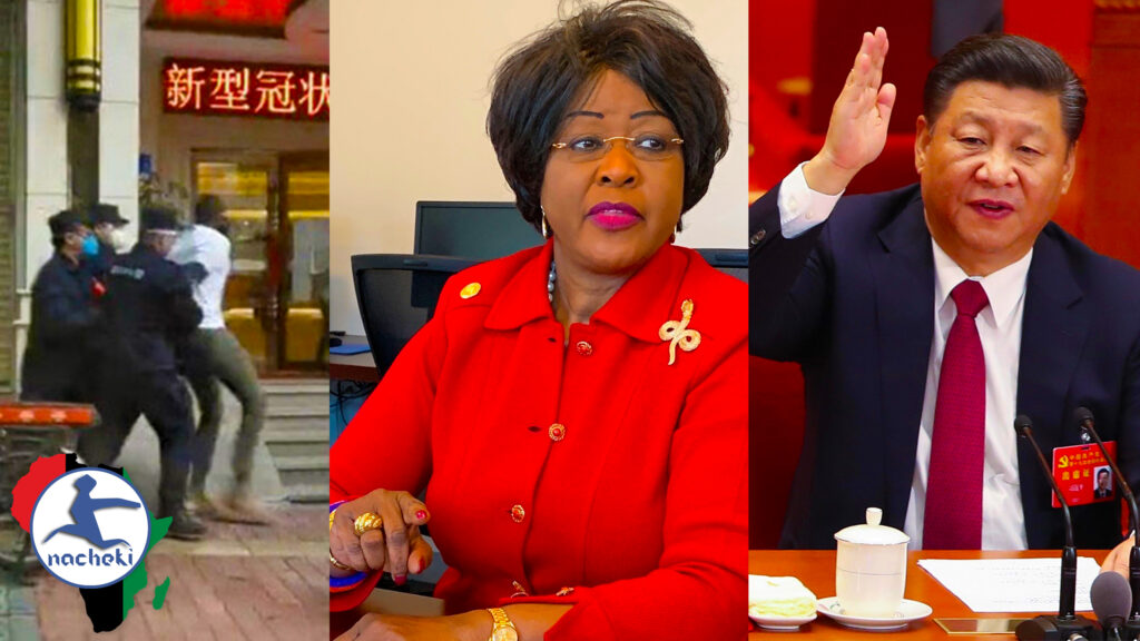 Ambassador Dr. Chihombori-Quao Explosively Reacts to the Mistreatment of Africans in China