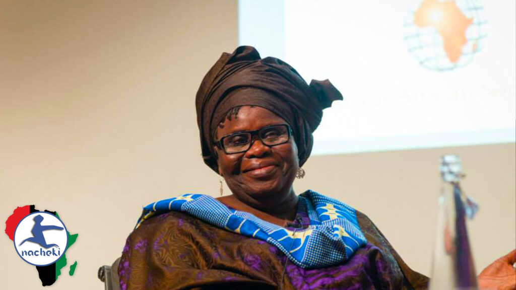 African Visionary Ama Aidoo Asks Where the Western World Would be Today Without Africa