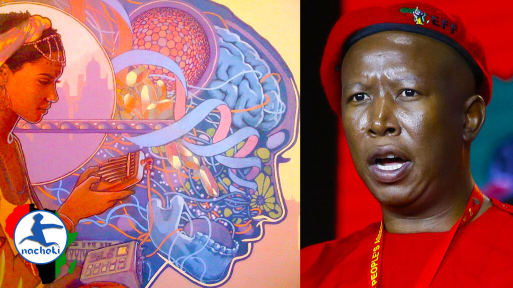 Julius Malema Talks on the Awakening of the Black Consciences