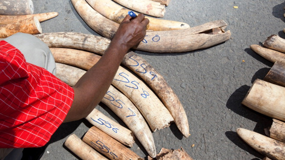 Kenya arrests man wanted for illegal ivory trading