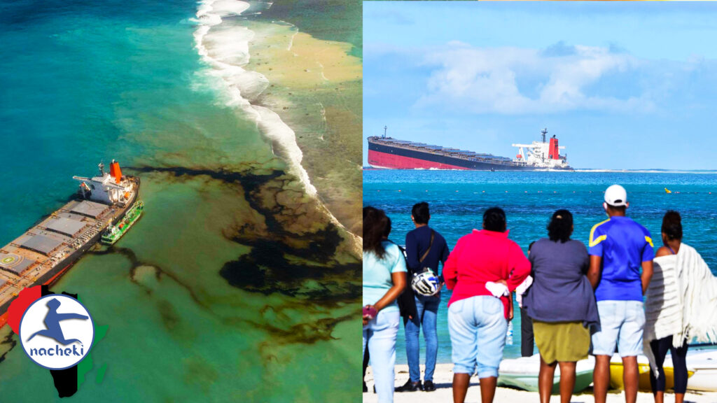 Mauritius Faces Worst Ecological Disaster of 2020 as Japanese Ship Defiles its Pristine Waters