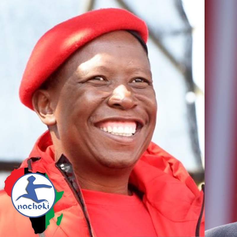 Julius Malema's Hilarious Yet Truthful Reaction to the Cry Baby Trump on US Elections