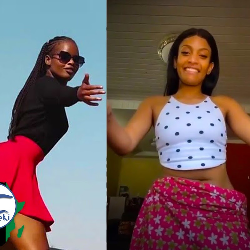 Top 10 African Dance Challenges That Went Viral in 2020
