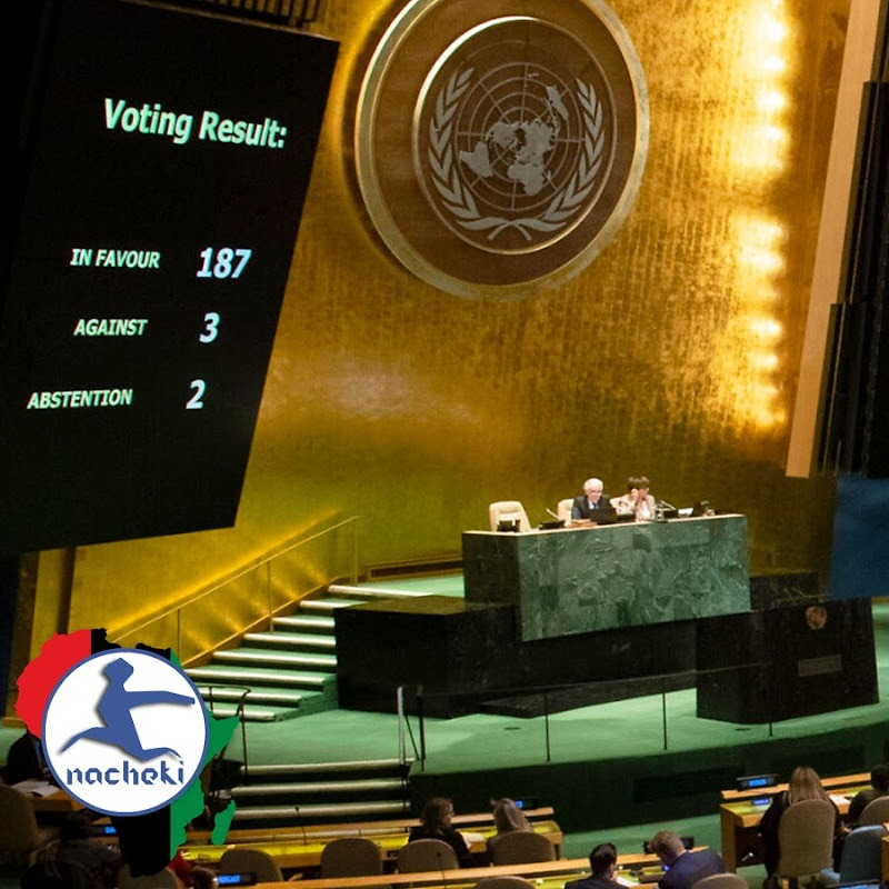 Shock as Nine African Countries Indebted to the UN Lose Their Voting Rights
