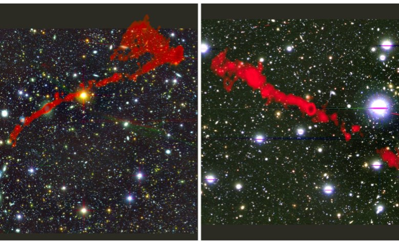 'Gigantic' Galaxies Discovered by South African Radio Telescope