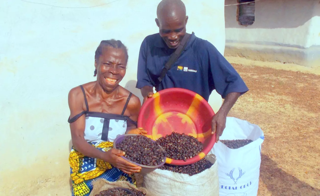 Liberian Social Entrepreneur Tranforms Palm Oil Producers' Lives