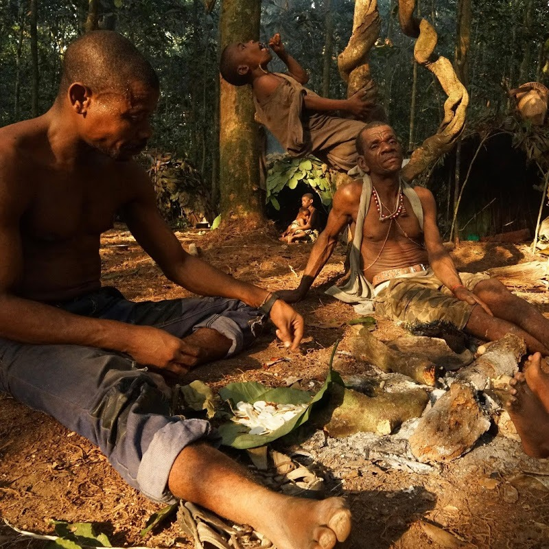 World's Smallest People Pygmies of Africa Might Just be Real-life Hobbits