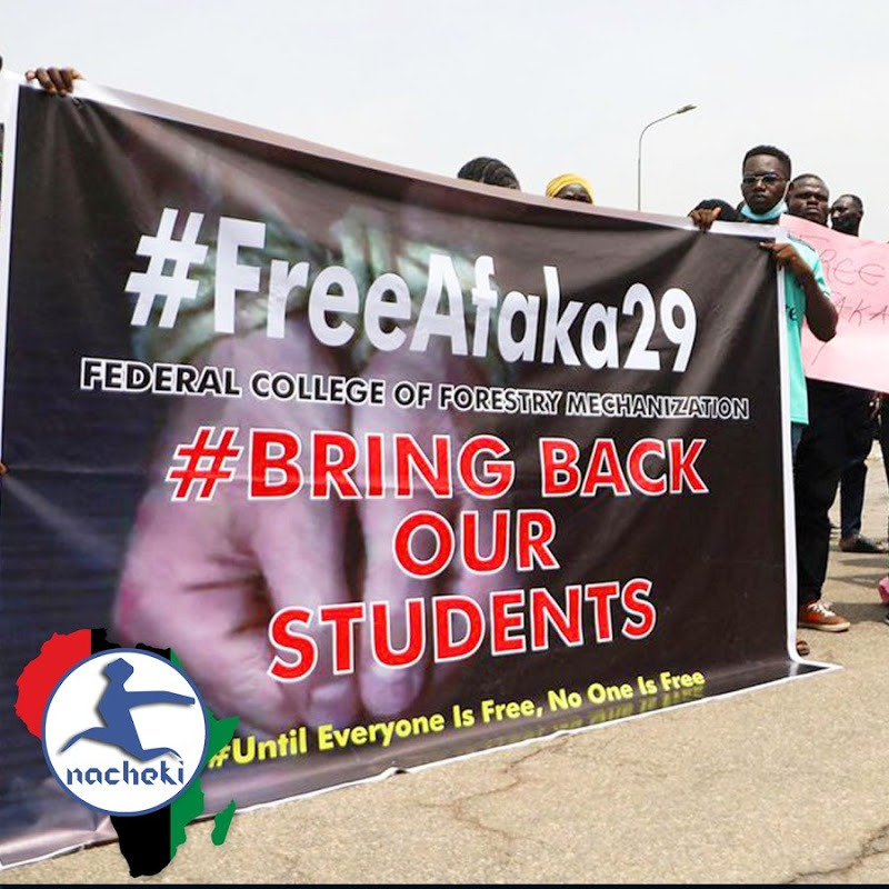 Good News as 29 Kidnapped Nigerian Students Released Unharmed