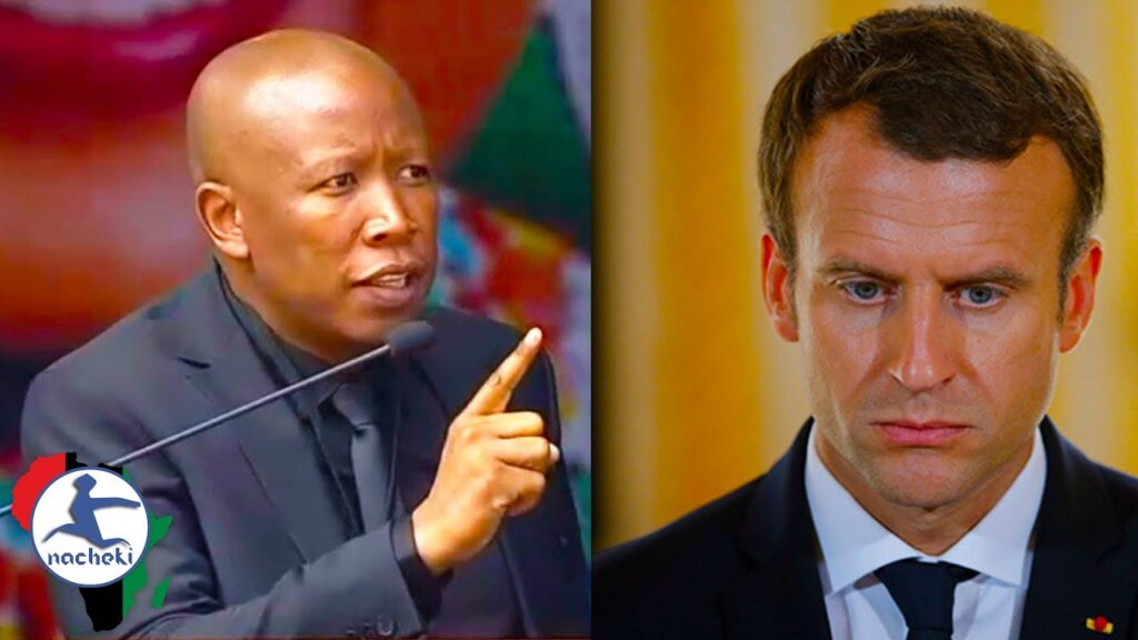 Julius Malena Demands France to Stay Away from Africa's Business