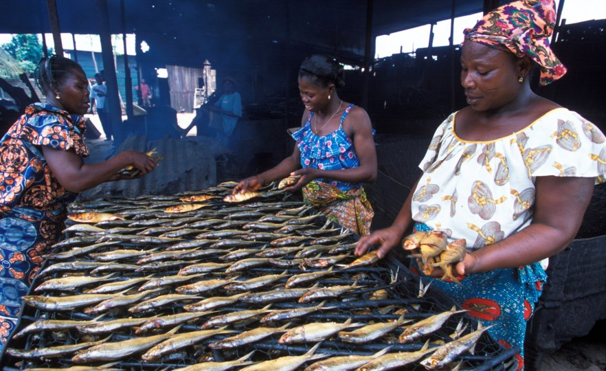 Unlocking the Potential of Aquaculture in Cameroon