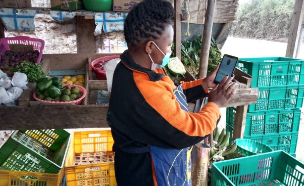 Kenyan Farmers Tap Into Apps to Work Smarter