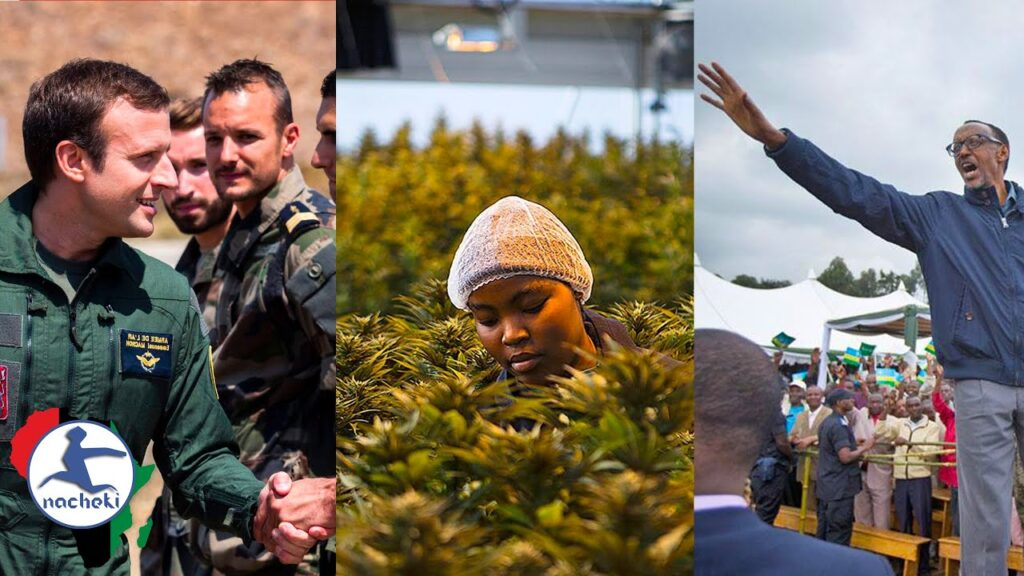 French Military Finally Leaving Africa, More African Govts Legalise Weed, Rwanda Burundi Now Friends