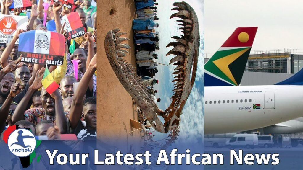 Thousands in Mali Denounce France, Rare Dinosaur Discovered in Morocco, S.African Airways is Back